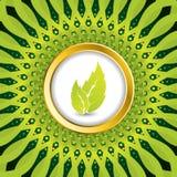 Bio background design Stock Image