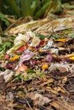 Bio basura Imagen de archivo libre de regalías