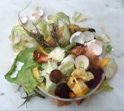 Bio-basura fresca Fotografía de archivo libre de regalías