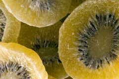 Bio big kiwis dehydrated. Fruit royalty free stock image