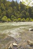 Bio Bio river, Chile Royalty Free Stock Photo