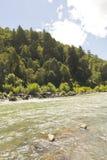The Bio Bio river, Chile. The Bio Bio river passing through Nalcas National Reserve, National Park. Chilean Patagonia, Chile Stock Image
