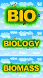 Bio biologibiomassa Arkivfoton