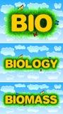 Bio Biology Biomass Stock Photos