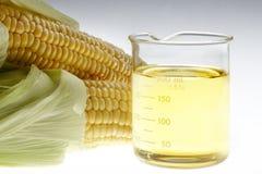 Bio brandstofstilleven stock afbeeldingen