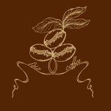 Bio café illustration libre de droits