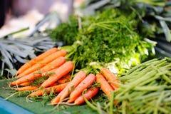 Bio- carote sane fresche Fotografia Stock Libera da Diritti