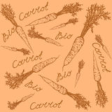 Bio carrot pattern. Pattern of carrots with leaves in a retro style and the inscription bio carrots Stock Photography