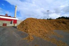 Bio central eléctrica del combustible Imagenes de archivo