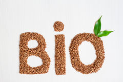 Bio cereais do trigo mourisco em um fundo branco Foto de Stock Royalty Free