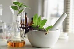 Bio- combustibile Fotografia Stock