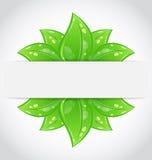 Bio concept design eco friendly banner Stock Image