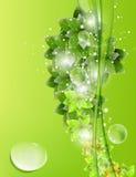 Bio conceptontwerp Stock Foto's