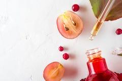 Bio cosméticos orgánicos con los ingredientes herbarios extracto, aceites de semilla de la uva, suero Copie el espacio, endecha d imagen de archivo libre de regalías