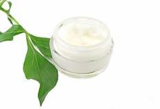 Bio- cosmetico naturale crema di cura di pelle fotografia stock