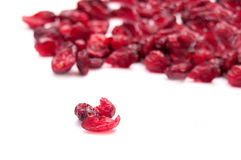 Bio cranberries Stock Photo