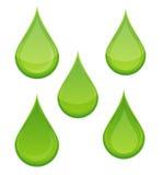 Bio de dalingssymbolen van de aard geplaatst groene kleur Royalty-vrije Stock Afbeeldingen