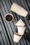 Bio-degradabile pots with soil. Ready for planting bio-degradable pots Stock Photography