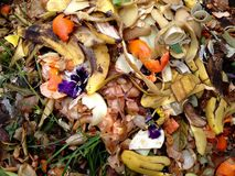 Bio-desperdício e adubo frescos Imagens de Stock Royalty Free