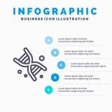 Bio, DNA, Genetik, Technologie-Linie Ikone mit Hintergrund infographics Darstellung mit 5 Schritten lizenzfreie abbildung