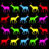 Bio doe morning horns hooves legs structure sharp nature wild el. K Stock Photos