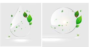 Bio eco do projeto de conceito da gota da água Fotos de Stock Royalty Free