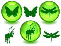 Bio of ecogebieden stock illustratie