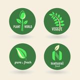 Bio - ecología - verde - natural - vegetariano libre illustration