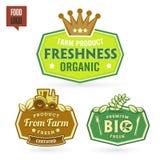 Bio - Ecology - Green icon set Royalty Free Stock Images