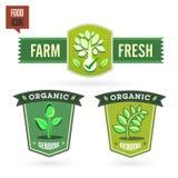 Bio - Ecology - Green icon set Stock Images