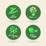 Bio - Ecology - Green - Natural - vegetarian Royalty Free Stock Photography