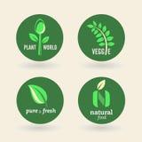 Bio - Ecology - Green - Natural - vegetarian Stock Image