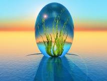 Bio egg Stock Photo