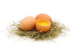 Bio eggs Royalty Free Stock Image