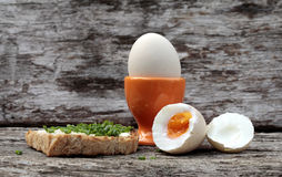 Bio eggs Royalty Free Stock Photos