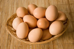 Bio eggs Royalty Free Stock Photography