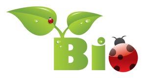Bio encabezamiento con el ladybug ilustración del vector