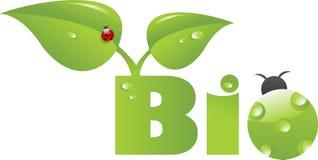 Bio encabezamiento con el ladybug verde libre illustration