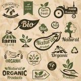 Bio, etiquetas do alimento e emblemas orgânicos, naturais ilustração royalty free