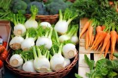 Bio- finocchio e carote sani freschi Fotografia Stock