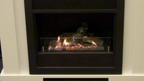 Bio fireplot moderno no close-up do gás do álcool etílico video estoque