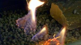 Bio- fireplot moderno sul primo piano del gas dell'etanolo archivi video