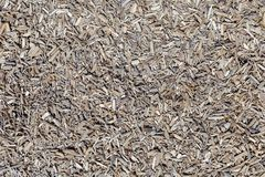 A bio floor made of sawdust texture royalty free stock photo