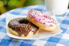 Fresh donuts and glass of milk on nature backgroun Royalty Free Stock Photo