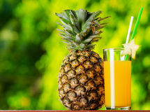 Glass of pineapple juice in a garden Stock Photo