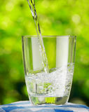 Glass of water on nature background Royalty Free Stock Photo