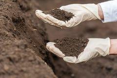 Bio food production. royalty free stock image
