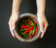 Red and green pepper in mortar Stock Images