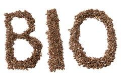 Bio- foto del segno del seme di lino Bella immagine, fondo, wallpape Fotografia Stock Libera da Diritti