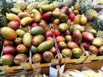 Bio- frutta del mango fotografie stock libere da diritti